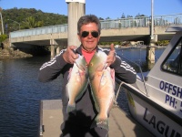 Noosa fishing charter Parrots from Massouds