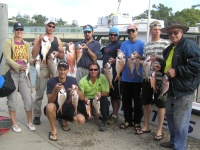 Noosa fishing Shanes Groups Snapper