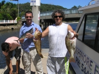 Noosa Fishing Moari Cod