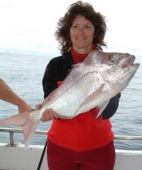 Sunshine Coast fishing Charter Snapper