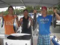 Brett, marcus and dennis fishing noosa for bonito