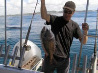 Queensland Fishing Charter Sweetlip