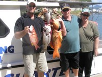 Noosa Fishing Mixed bag