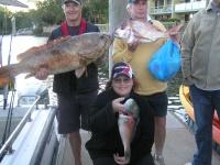 Noosa Fishing Charters Cod