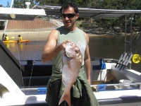 Noosa fishing charter Peter Miglis Snapper Noosas Laguna CHarters