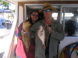 Queensland Fishing Charter Moari Cod and Snapper