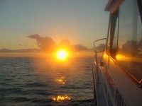 Noosa Day Tours Sunset