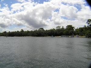 Noosa River Tours